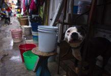 corte de agua en el Estado de México