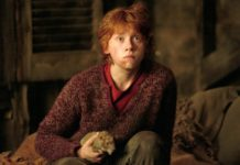 rupert grint en harry potter