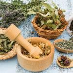 guia-para-usar-las-18-plantas-medicinales-legales-en-mexico