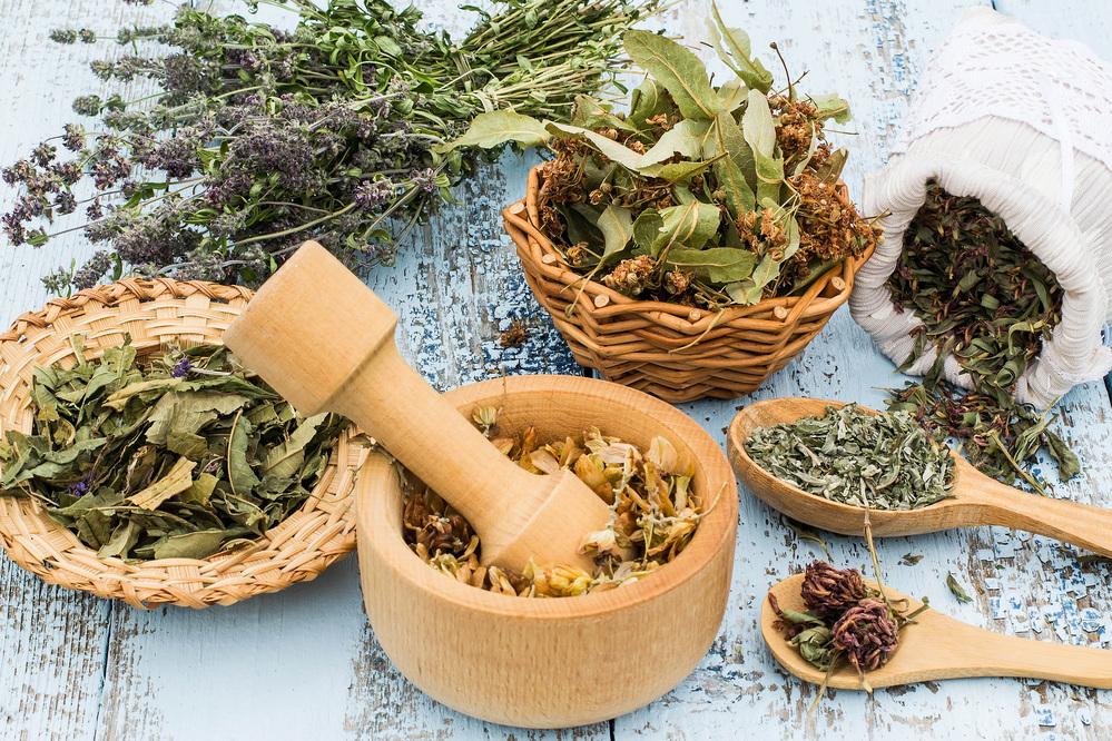 Chilango - ?Guía para usar las 18 plantas medicinales legales en ...