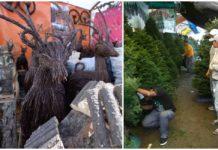 Feria del venado en Xochimilco