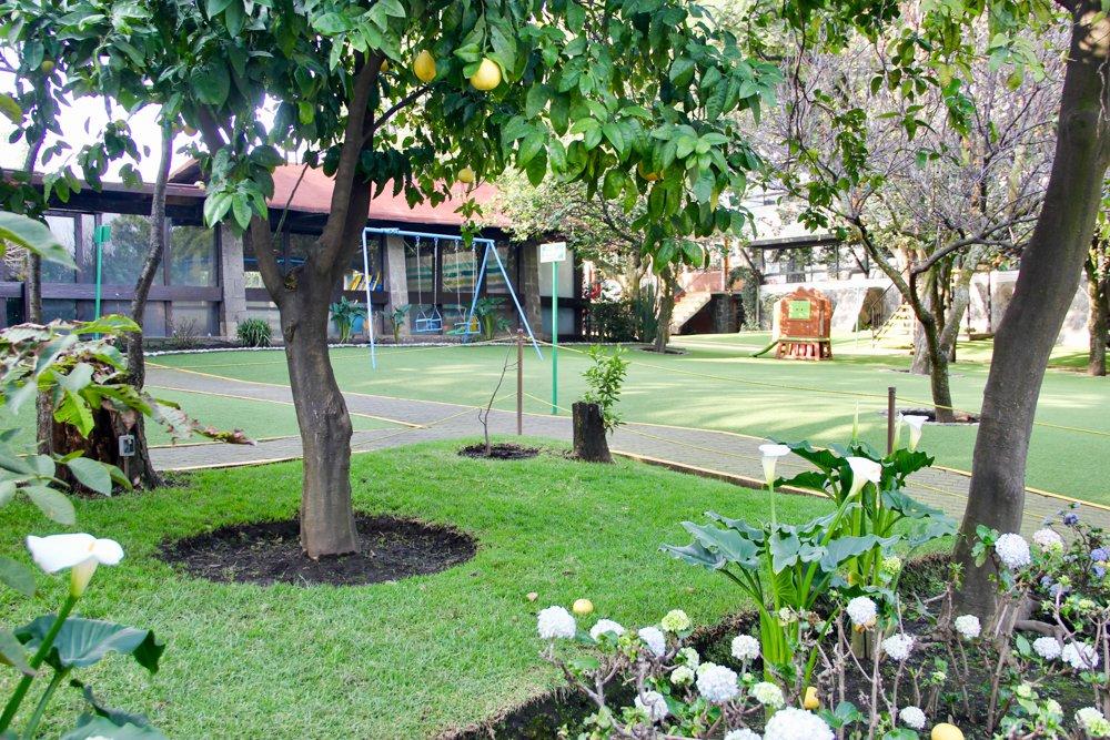 Colegio Montessori Colomba