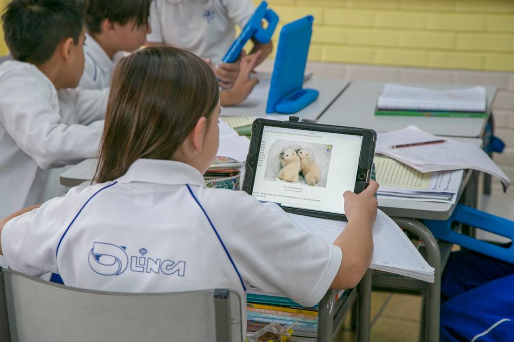 Colegio Olinca Altavista
