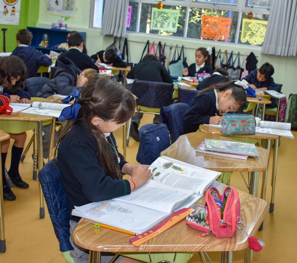 Liceo Mexicano Japonés