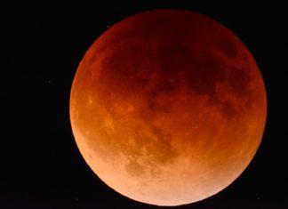 Â¡Auuuu! Tendremos Luna de sangre de lobo en enero