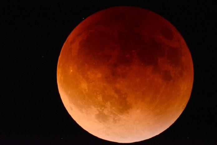 ¡Auuuu! Tendremos Luna de sangre de lobo en enero