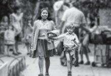premios oscar en la colonia roma