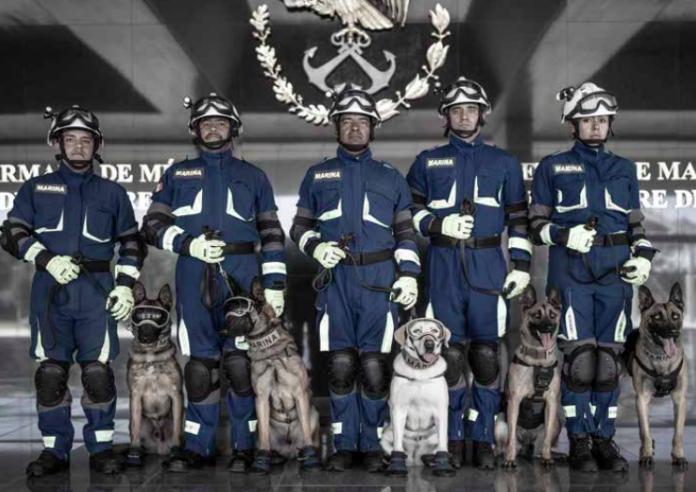 binomios caninos de la Marina