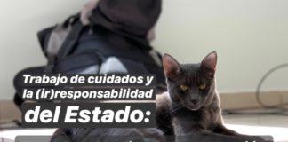 gatitos contra la desigualdad estancias infantiles