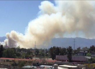 reportan incendio en xochimilco