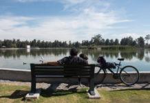 Lanzan plan para rehabilitación del Bosque de Aragón