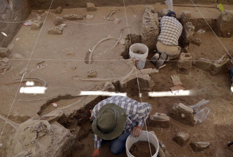 no-mamut-hallan-cementerio-de-animales-prehistoricos-en-tultepec