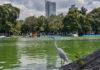 Cuarta Sección del Bosque de Chapultepec