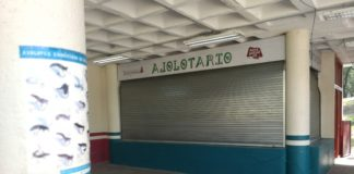 Ajolotario del Parque Tezozómoc