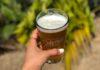 Club de cerveza Club de Colima