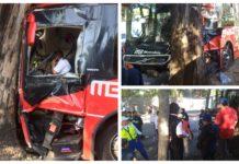Metrobús chocó contra un árbol