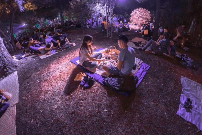 Picnic nocturno