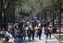 corredores reforma y chapultepec