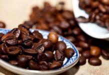 Festival Latinoamericano del Cacao y el Café