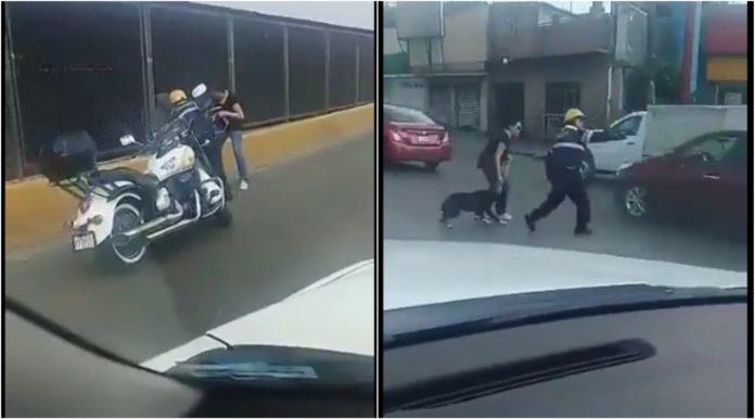 rescate de un perro en circuito interior