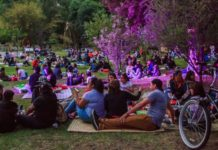 picnic nocturno de junio 2019