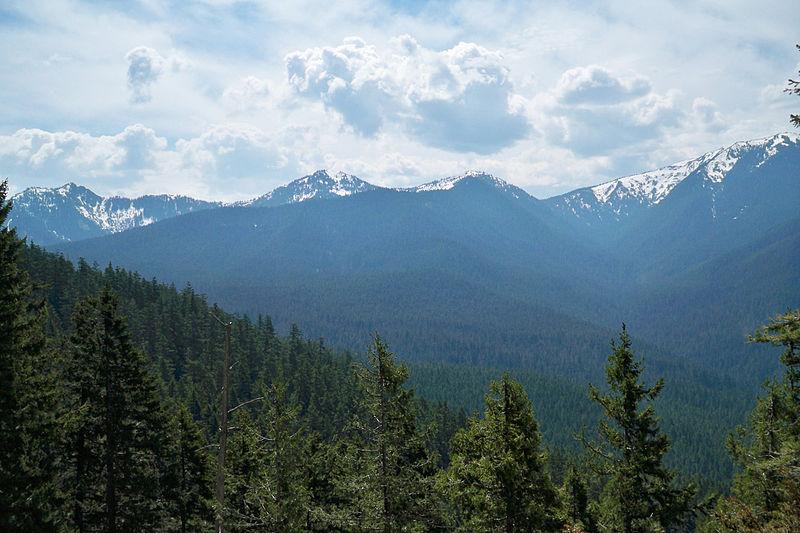 reserva natural del ajusco paisaje