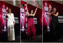 Premios Ariel 2019