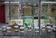 Herbario Medicinal del IMSS