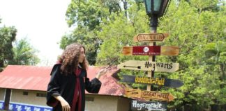 campamento de harry potter