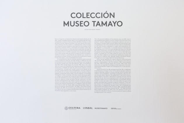 coleccion museo tamayo