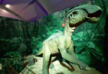 expos de dinosaurios en la cdmx