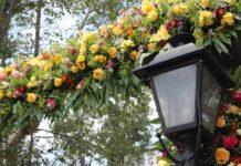 feria de las flores en san ángel 2019