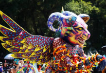 desfile de alebrijes 2019