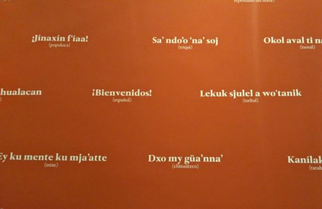 expo lenguas indigenas