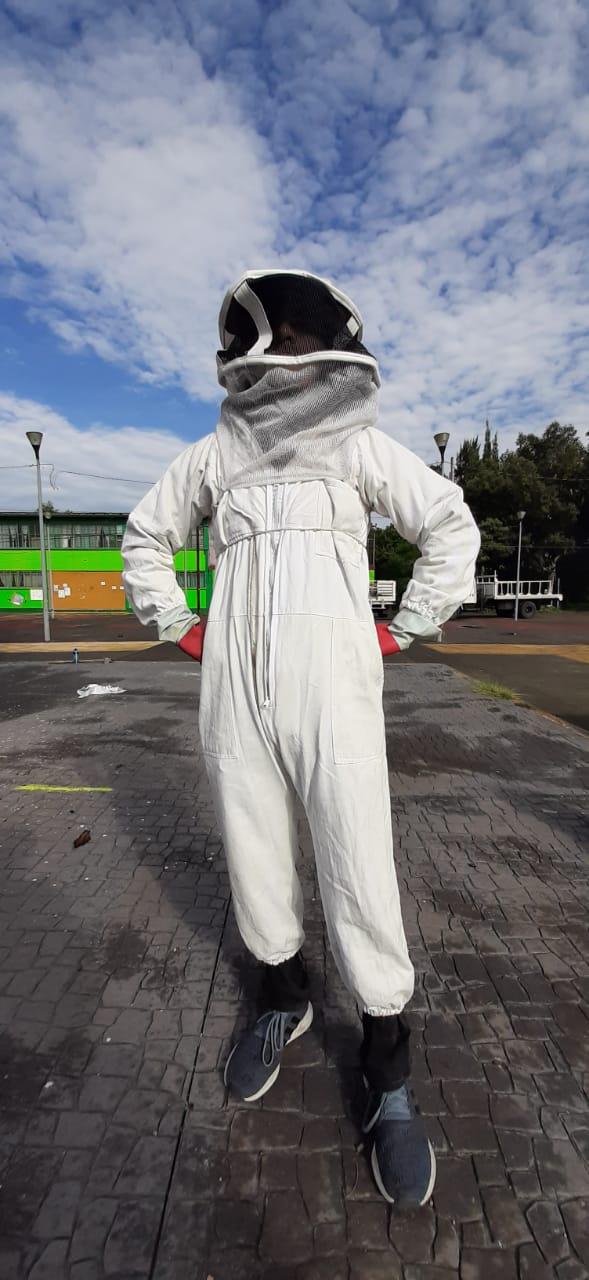 rescate de abejas en la CDMX