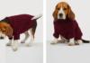 ropa para perros de H&M