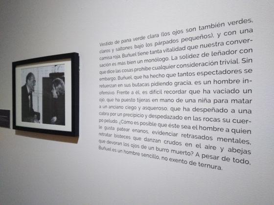 entrevistas luis buñuel