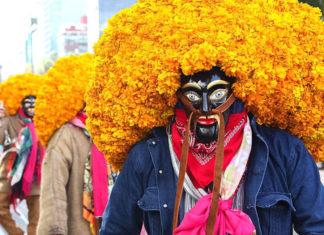 festival de flores del centro histórico
