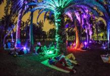 picnic nocturno en la cdmx en octubre 2019