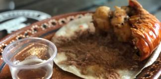 tacos de langosta en cdmx