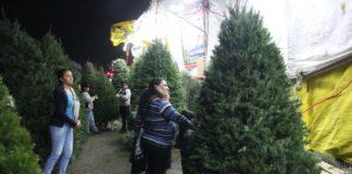 costo de poner el árbol de Navidad
