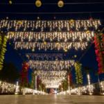 navidad-en-jardines-de-mexico-escapate-a-los-recorridos-nocturnos-iluminados-%f0%9f%8e%84%f0%9f%8e%87