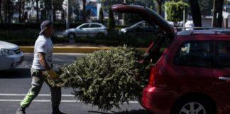 intercambia tu árbol de navidad