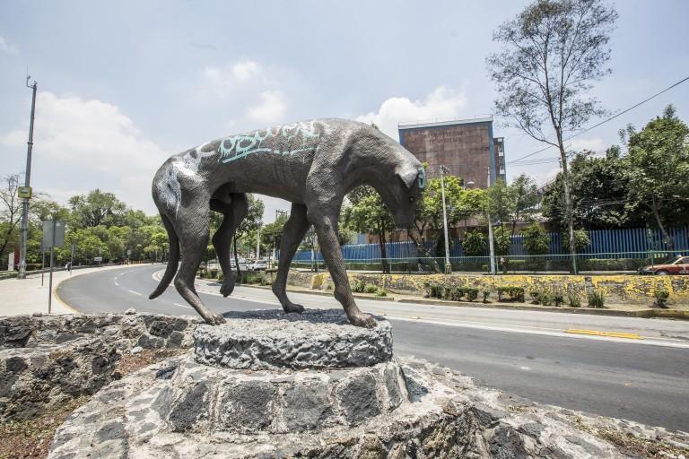 la-historia-del-monumento-al-perro-callejero-te-rompera-el-corazon-%f0%9f%98%a2