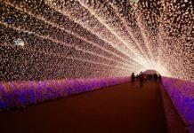 festival de luces de japón