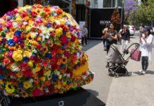 festival flores y jardines 2020