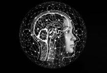 Dos libros sobre el cerebro