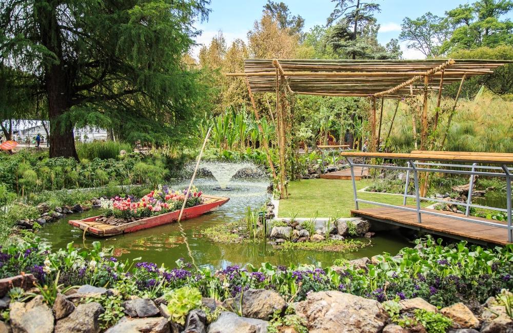 verde-que-te-quiero-verde-guia-de-jardines-botanicos-en-cdmx-%f0%9f%8c%bf