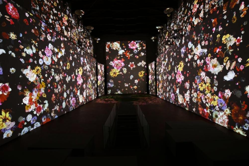 Monet Experience: fechas y medidas para abrir la expo