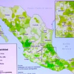 unam-presenta-mapa-de-municipios-mas-vulnerables-ante-covid-19